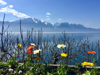 Flowers by the lake in Montreux