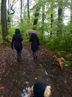 In the woods with the pack