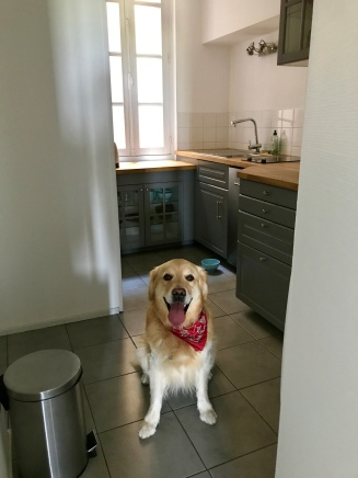 Murphy ready to get cooking!