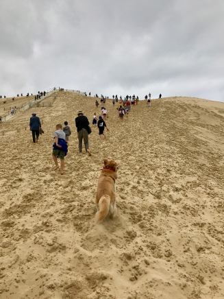 The climb up!
