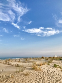 Beautiful, but dog-less, beach
