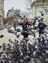 Crazy pigeon people